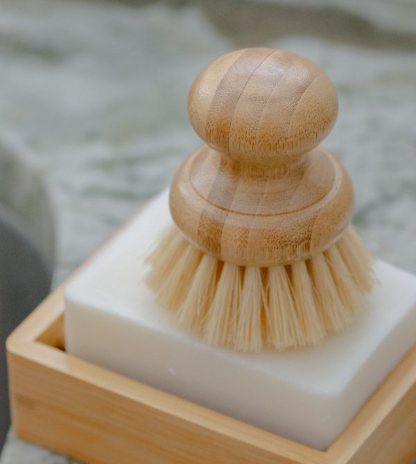 CASA AGAVE™ Dish Brush