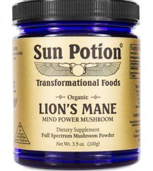 Lion's Mane (Organic) 100 grams
