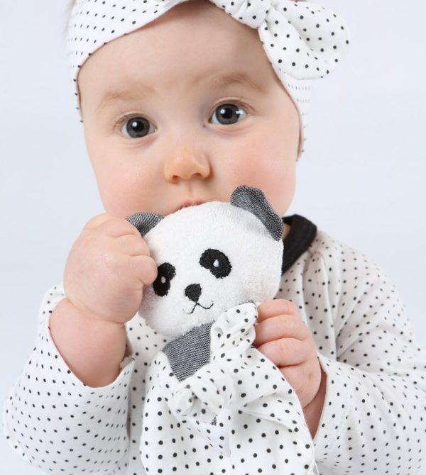 Panda Bear Blanket Friend