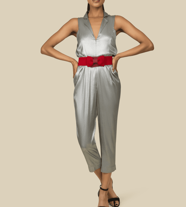 Silver Silk Jumpsuit with front zipper